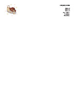 Fashion01 Letterhead